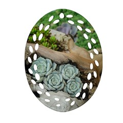 Plant Succulent Plants Flower Wood Oval Filigree Ornament (2-Side)