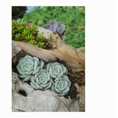 Plant Succulent Plants Flower Wood Small Garden Flag (Two Sides)