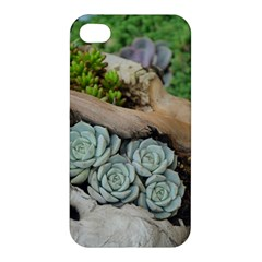 Plant Succulent Plants Flower Wood Apple iPhone 4/4S Premium Hardshell Case