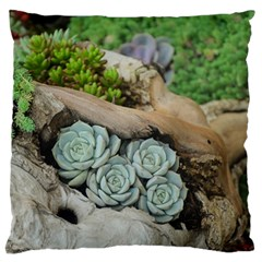 Plant Succulent Plants Flower Wood Large Cushion Case (Two Sides)
