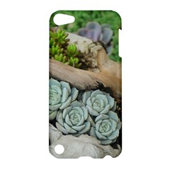 Plant Succulent Plants Flower Wood Apple iPod Touch 5 Hardshell Case