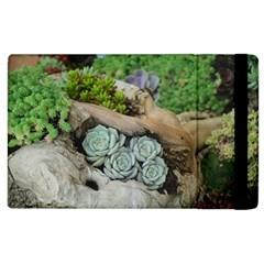 Plant Succulent Plants Flower Wood Apple iPad 3/4 Flip Case