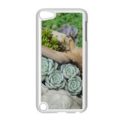 Plant Succulent Plants Flower Wood Apple iPod Touch 5 Case (White)