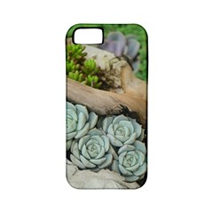 Plant Succulent Plants Flower Wood Apple iPhone 5 Classic Hardshell Case (PC+Silicone)