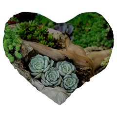 Plant Succulent Plants Flower Wood Large 19  Premium Heart Shape Cushions