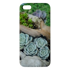 Plant Succulent Plants Flower Wood Apple iPhone 5 Premium Hardshell Case
