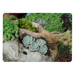 Plant Succulent Plants Flower Wood Samsung Galaxy Tab 10.1  P7500 Flip Case