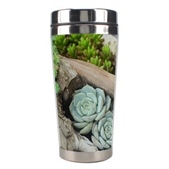 Plant Succulent Plants Flower Wood Stainless Steel Travel Tumblers
