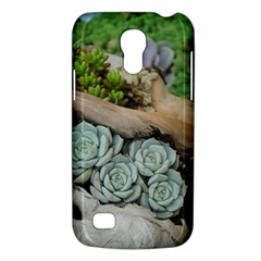 Plant Succulent Plants Flower Wood Galaxy S4 Mini