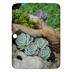 Plant Succulent Plants Flower Wood Samsung Galaxy Tab 3 (10.1 ) P5200 Hardshell Case