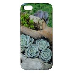 Plant Succulent Plants Flower Wood iPhone 5S/ SE Premium Hardshell Case