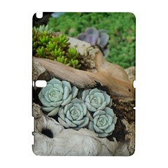 Plant Succulent Plants Flower Wood Galaxy Note 1