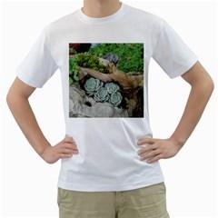 Plant Succulent Plants Flower Wood Men s T-Shirt (White)