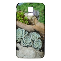 Plant Succulent Plants Flower Wood Samsung Galaxy S5 Back Case (White)