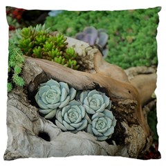 Plant Succulent Plants Flower Wood Large Flano Cushion Case (Two Sides)