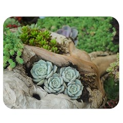 Plant Succulent Plants Flower Wood Double Sided Flano Blanket (Medium)