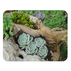 Plant Succulent Plants Flower Wood Double Sided Flano Blanket (Large)