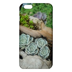 Plant Succulent Plants Flower Wood iPhone 6 Plus/6S Plus TPU Case