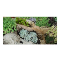 Plant Succulent Plants Flower Wood Satin Shawl