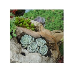 Plant Succulent Plants Flower Wood Small Satin Scarf (Square)