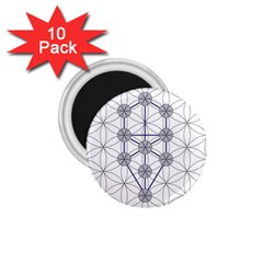 Tree Of Life Flower Of Life Stage 1.75  Magnets (10 pack)
