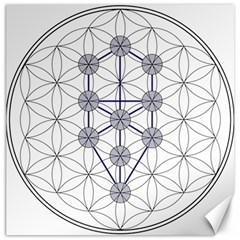 Tree Of Life Flower Of Life Stage Canvas 12  x 12