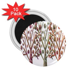 Magical autumn trees 2.25  Magnets (10 pack)