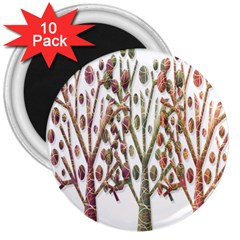 Magical autumn trees 3  Magnets (10 pack)