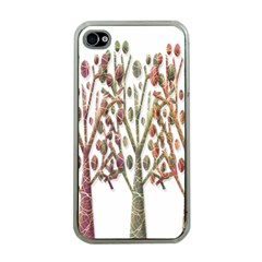 Magical autumn trees Apple iPhone 4 Case (Clear)