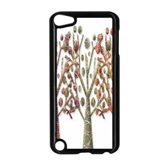 Magical autumn trees Apple iPod Touch 5 Case (Black)