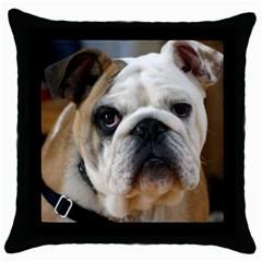 Bulldog Throw Pillow Case (Black)