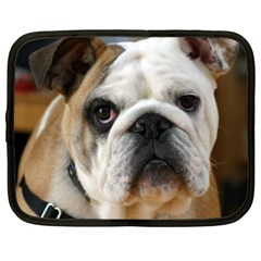 Bulldog Netbook Case (XL)