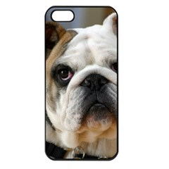 Bulldog Apple iPhone 5 Seamless Case (Black)