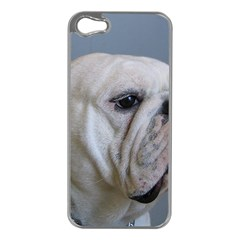 White Bulldog Apple iPhone 5 Case (Silver)