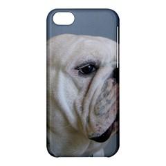 White Bulldog Apple iPhone 5C Hardshell Case