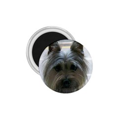 Cairn Terrier 1.75  Magnets