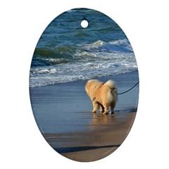 Chow Chow On Beach Ornament (Oval)