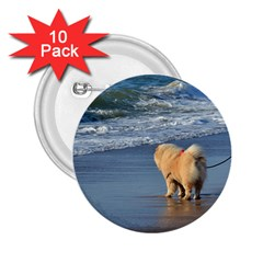 Chow Chow On Beach 2.25  Buttons (10 pack)