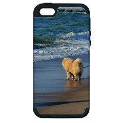 Chow Chow On Beach Apple iPhone 5 Hardshell Case (PC+Silicone)