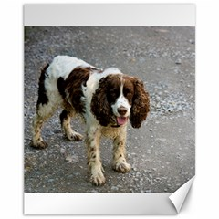 English Springer Spaniel Full Canvas 11  x 14