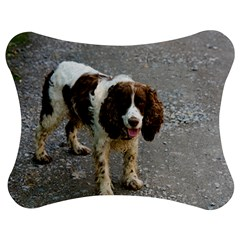English Springer Spaniel Full Jigsaw Puzzle Photo Stand (Bow)