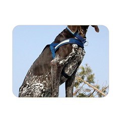 German Shorthair Pointer Sitting Double Sided Flano Blanket (Mini)