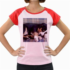 Greater Swiss Mountain Dog Puppy Women s Cap Sleeve T-Shirt