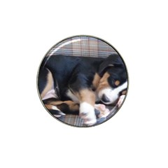 Greater Swiss Mountain Dog Puppy Hat Clip Ball Marker (4 pack)