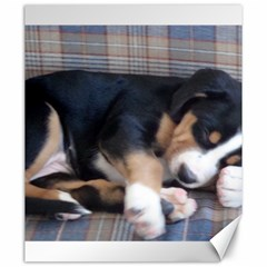 Greater Swiss Mountain Dog Puppy Canvas 20  x 24