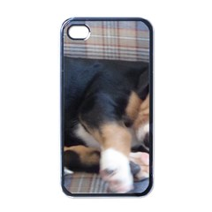 Greater Swiss Mountain Dog Puppy Apple iPhone 4 Case (Black)