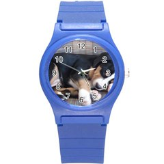 Greater Swiss Mountain Dog Puppy Round Plastic Sport Watch (S)