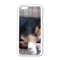 Greater Swiss Mountain Dog Puppy Apple iPhone 6/6S White Enamel Case