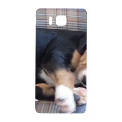 Greater Swiss Mountain Dog Puppy Samsung Galaxy Alpha Hardshell Back Case