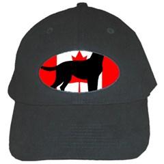 Labrador Retriever Silo Canadian Flag Black Cap